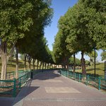 stroll around the park and inhale the freshness of the air here