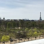 View of Tuilleries Garden from our Balcony