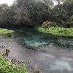 Rio Sucuri ภาพถ่าย