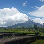 ภาพถ่ายของ Cagsawa Ruins Park