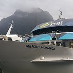 boat to cruise Milford sound