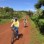 We organize mountain bike tours through beautiful landscapes and local villages
