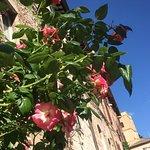 Centro Storico di Assisi ภาพถ่าย