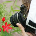 Macro photography on the landscape course