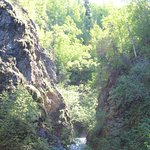 TBird falls from the river spur trail