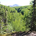 View from main trail