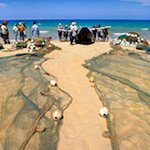 Fishermen drying their nets back from fishing - traditional culture at your footstep