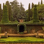 Meticulous topiary and water are used to create a green canvas