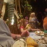 Bild från Rainforest Cafe