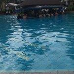 Phuket Marriott Resort & Spa, Merlin Beach Φωτογραφία