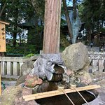 Suwa Shrine Photo
