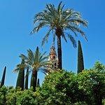 Giardino con Torre Campanaria.