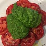 Caprese Salad (with HUGE basil leaf)
