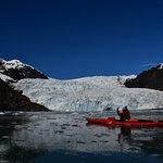 Sunny Cove Sea Kayaking ภาพถ่าย
