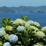 紫陽花と空と海に癒されます!