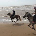 Horse dancing :)