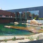Wroclaw Zoo & Afrykarium Foto
