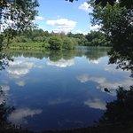 Loddon Nature Reserve Photo