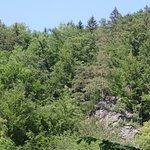 Bad Schandau - Nationalpark 6