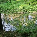 Bad Schandau - Nationalpark 7