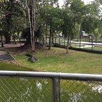 Photo de CIGS Zoo