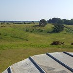 view from Tranmer House