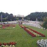 Foto dei giardini