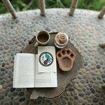 Barahi Jungle Lodge照片