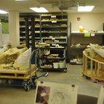 Mammoth site lab