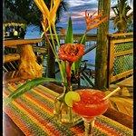 tasty cocktails  cocktails