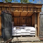 Fire wood for sale $12 a bundle