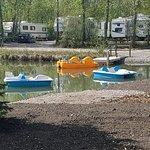Peddle boat rentals
