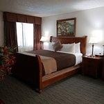 Deluxe Suite Bedroom Area