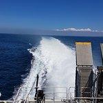 Condor Ferries照片