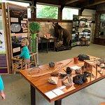 Highlands Biological Station, Nature Center and Botanical Gardens Photo