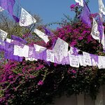 The colors of San Angel.