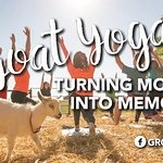 Goat Yoga classes at Grotto Gardens