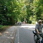 Foto de Parque de Monza
