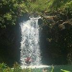 Hana Tours of Maui صورة فوتوغرافية