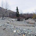 Mudslide Path