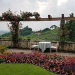 Villa Cipriani garden