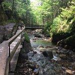 Flume Gorge ภาพถ่าย