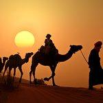 Camel trekking during the sunset time in the desert