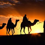 Sunset from a camel view