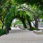 Amigo Free Walking Tours conclude at San Antonio's beautiful Yanaguana Garden.