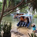 Living Colours Dive Resort Photo