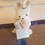 cute welcome towel animal