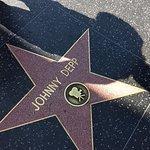 Hollywood Walk of Fame ภาพถ่าย