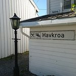 Havkroa Photo