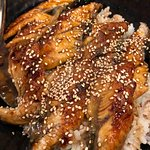 Unaju (BBQ Eel on Rice w/ Sauce)